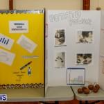 Elliot Primary School Science Fair Bermuda, Feb 26 2014-98