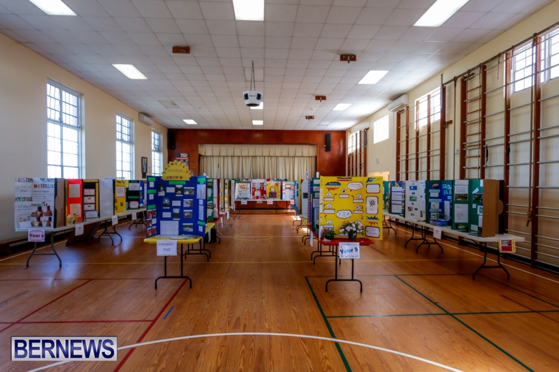 Purvis Primary School Science Fair Bermuda, Feb 26 2014-1