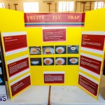 Purvis Primary School Science Fair Bermuda, Feb 26 2014-100