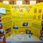 Purvis Primary School Science Fair Bermuda, Feb 26 2014-101
