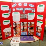Purvis Primary School Science Fair Bermuda, Feb 26 2014-109