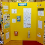 Purvis Primary School Science Fair Bermuda, Feb 26 2014-11