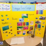 Purvis Primary School Science Fair Bermuda, Feb 26 2014-111