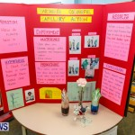 Purvis Primary School Science Fair Bermuda, Feb 26 2014-114