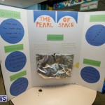 Purvis Primary School Science Fair Bermuda, Feb 26 2014-122