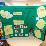 Purvis Primary School Science Fair Bermuda, Feb 26 2014-125
