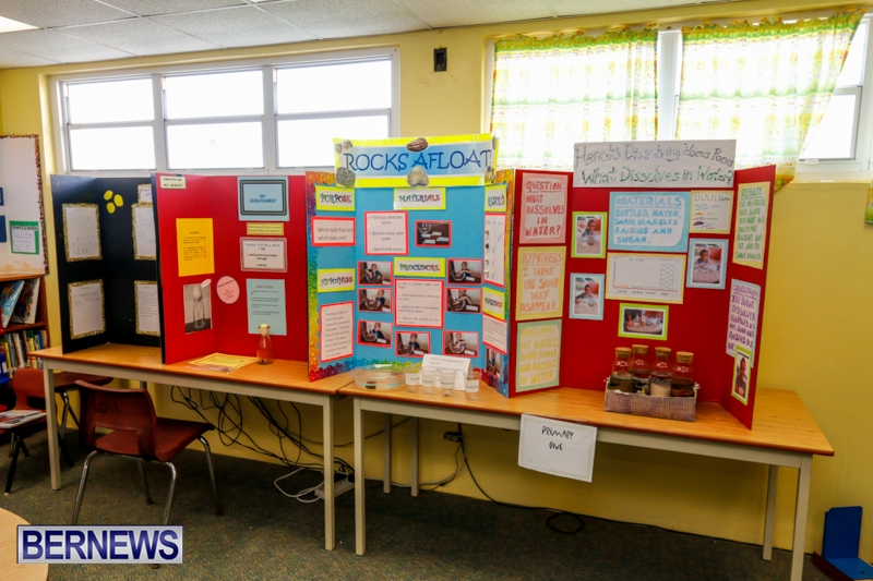 Purvis Primary School Science Fair Bermuda, Feb 26 2014-126