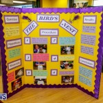 Purvis Primary School Science Fair Bermuda, Feb 26 2014-129