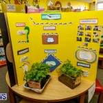 Purvis Primary School Science Fair Bermuda, Feb 26 2014-140