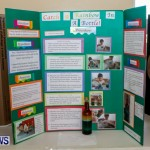 Purvis Primary School Science Fair Bermuda, Feb 26 2014-16