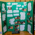 Purvis Primary School Science Fair Bermuda, Feb 26 2014-21