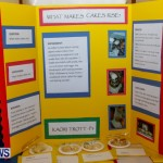 Purvis Primary School Science Fair Bermuda, Feb 26 2014-31