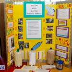 Purvis Primary School Science Fair Bermuda, Feb 26 2014-33