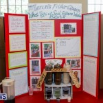 Purvis Primary School Science Fair Bermuda, Feb 26 2014-34