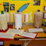 Purvis Primary School Science Fair Bermuda, Feb 26 2014-35