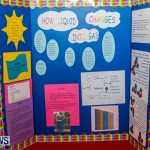 Purvis Primary School Science Fair Bermuda, Feb 26 2014-38