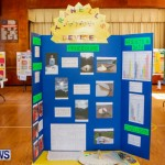 Purvis Primary School Science Fair Bermuda, Feb 26 2014-4