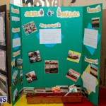 Purvis Primary School Science Fair Bermuda, Feb 26 2014-41