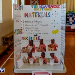 Purvis Primary School Science Fair Bermuda, Feb 26 2014-5