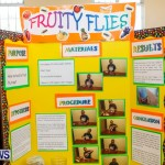 Purvis Primary School Science Fair Bermuda, Feb 26 2014-53