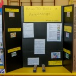 Purvis Primary School Science Fair Bermuda, Feb 26 2014-6