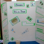 Purvis Primary School Science Fair Bermuda, Feb 26 2014-61