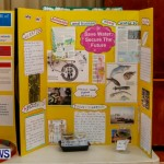 Purvis Primary School Science Fair Bermuda, Feb 26 2014-66