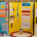 Purvis Primary School Science Fair Bermuda, Feb 26 2014-67