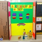 Purvis Primary School Science Fair Bermuda, Feb 26 2014-7