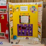 Purvis Primary School Science Fair Bermuda, Feb 26 2014-70