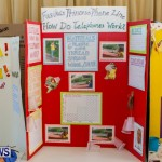 Purvis Primary School Science Fair Bermuda, Feb 26 2014-71