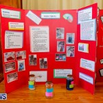 Purvis Primary School Science Fair Bermuda, Feb 26 2014-73