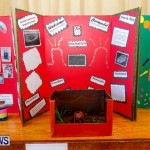 Purvis Primary School Science Fair Bermuda, Feb 26 2014-74