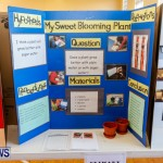 Purvis Primary School Science Fair Bermuda, Feb 26 2014-75