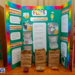 Purvis Primary School Science Fair Bermuda, Feb 26 2014-79