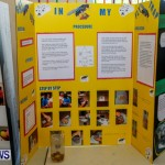 Purvis Primary School Science Fair Bermuda, Feb 26 2014-8