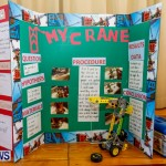 Purvis Primary School Science Fair Bermuda, Feb 26 2014-81