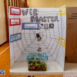 Purvis Primary School Science Fair Bermuda, Feb 26 2014-84