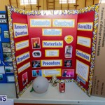 Purvis Primary School Science Fair Bermuda, Feb 26 2014-96