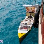 Aleksander Olek Doba Spirit of Bermuda Olo, March 23 2014-25