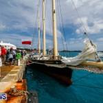 Aleksander Olek Doba Spirit of Bermuda Olo, March 23 2014-59