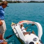 Aleksander Olek Doba Spirit of Bermuda Olo, March 23 2014-8