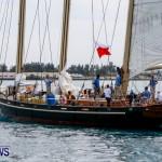 Aleksander Olek Doba Spirit of Bermuda Olo, March 23 2014-80