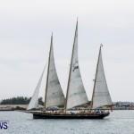 Aleksander Olek Doba Spirit of Bermuda Olo, March 23 2014-84