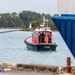 Danish fisheries research vessel Dana Bermuda, March 15 2014 (10)