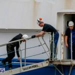 Danish fisheries research vessel Dana Bermuda, March 15 2014 (2)