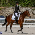 FEI Dressage Show Bermuda, March 5 2014-39