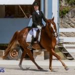 FEI Dressage Show Bermuda, March 5 2014-8