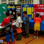 St David's Primary School Science Fair Bermuda, Feb 27 2014-13