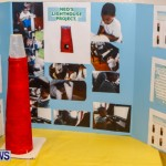 St David's Primary School Science Fair Bermuda, Feb 27 2014-14